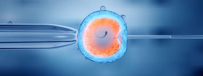 Nouveau Master en Reproduction humaine assistée